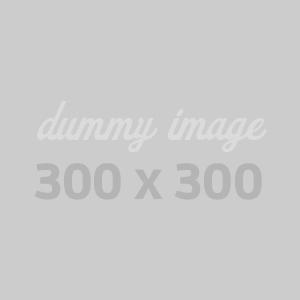 dummy300300